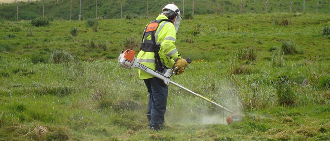 brushcutter training courses